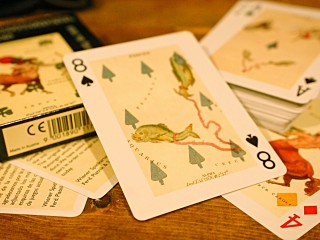 ATROROMICAL CARDS -星座トランプ-